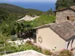 Ikaria Island holiday, organic farmstay villas in Greece