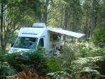 Huon Valley campsite in Tasmania