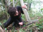 Cotswolds tree filling and coppicing course, England