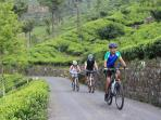 Sri Lanka cycling holiday