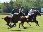 Learn Polo in Argentina