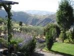 Alpujarras self catering accommodation, Andalucia, Spain