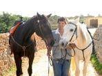 Gozo horse riding and carriage tour, Malta