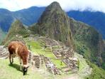 Inca Trail trek & Cusco tour