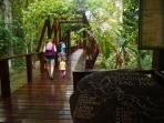 Peru eco lodge in the Amazon rainforest