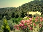 Cyprus villa accommodation