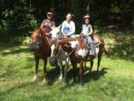 Horse riding & carriage trail tours in Western New York