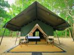 Sri Lanka luxury safari camp
