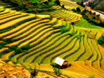 Vietnam tailor made holiday, the North West