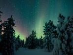 Finnish Lapland Christmas and New Year holiday