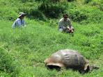 Peru and Galapagos adventure tour