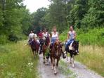 Croatia horse trekking holiday