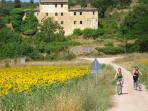 Umbria cycling holiday, Italy