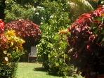 Tobago bed & breakfast near Crown Point
