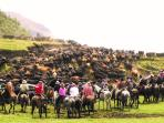 Ecuador horse riding tour