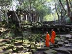 Grand tour of Cambodia, tailor made