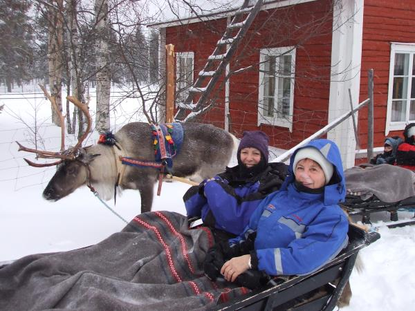 Winter holiday in Finnish Lapland, tailor made