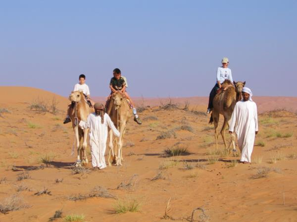 Oman family holiday, dolphin and dunes