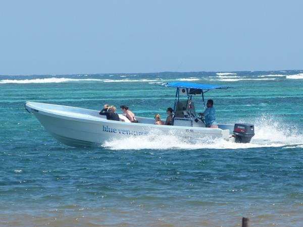 Marine conservation holiday in Belize