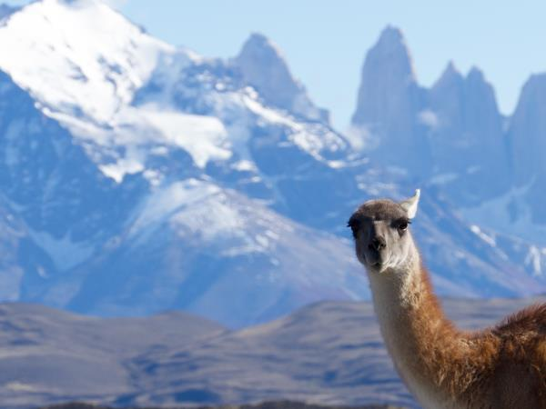 Atacama and Patagonia hiking holiday