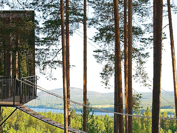 Treehotel and Northern Lights holiday, Sweden