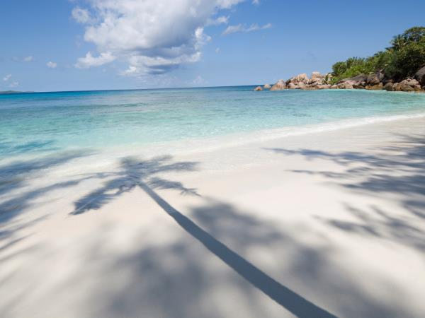 Seychelles honeymoon, Denis Private Island & La Digue
