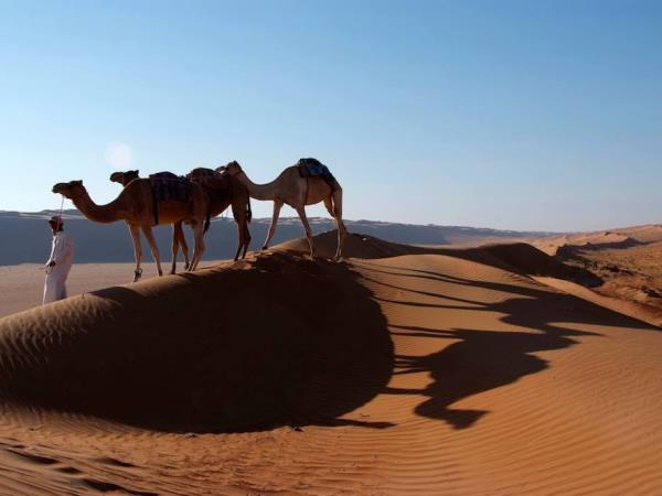 Oman tour, Sultan adventure