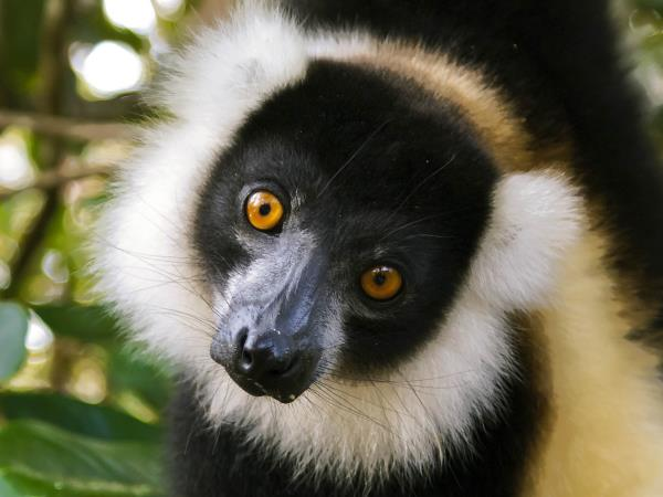 Madagascar tailor made holiday