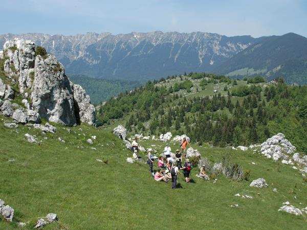 Romania wildlife and walking holiday