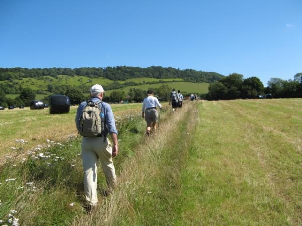 Surrey hills self guided walking holiday, London's doorstep