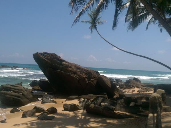 Best of Sri Lanka 21 day holiday