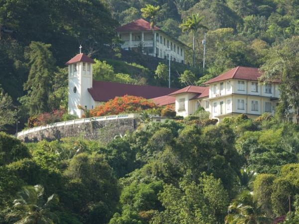 Trinidad & Tobago nature holiday