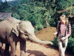 Family holiday in Sri Lanka, elephant heaven