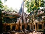 Angkor Wat tours, tailor made