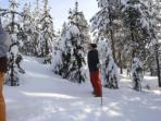 Holiday in Swedish Lapland, tailor made