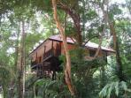 Tree house jungle activity holidays in Thailand