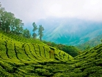 Kerala cultural holiday, tailor made