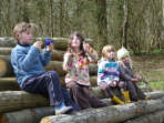 Family activity days out in Sussex