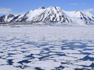 Tromso to Spitsbergen expedition cruise, via Bear Island
