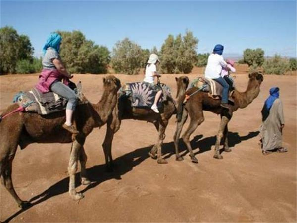 Family tour to Morocco