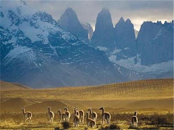 Paine and Fitz Roy trek, trekking holiday