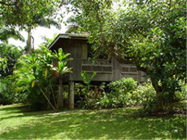 Kauai accommodation, organic farmstay in Hawaii
