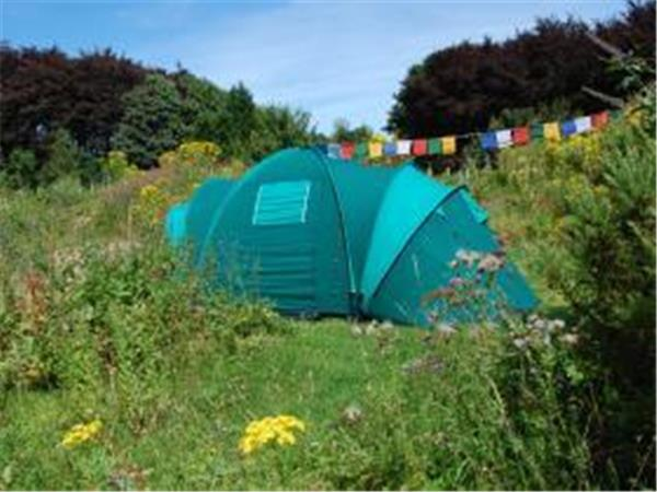 South Downs eco campsite, England