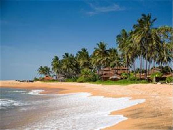 Honeymoon to Sri Lanka