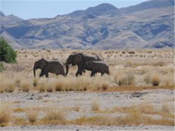 Holiday to Namibia