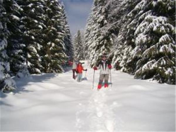 Ski touring holiday in Romania