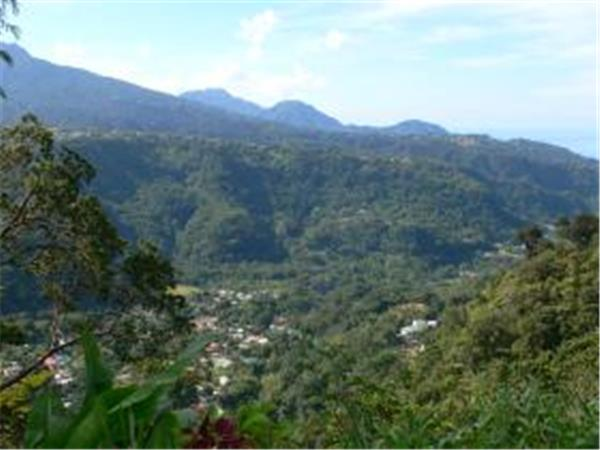 Dominica walking holidays, 16 days