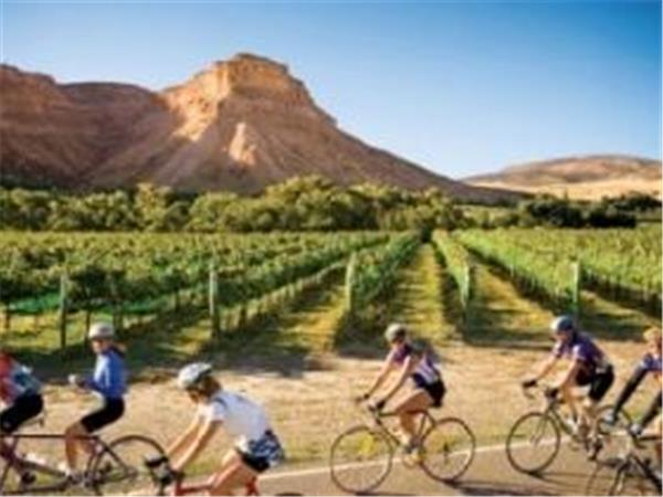 Palisade cycle tours and bike hire, Colorado, USA
