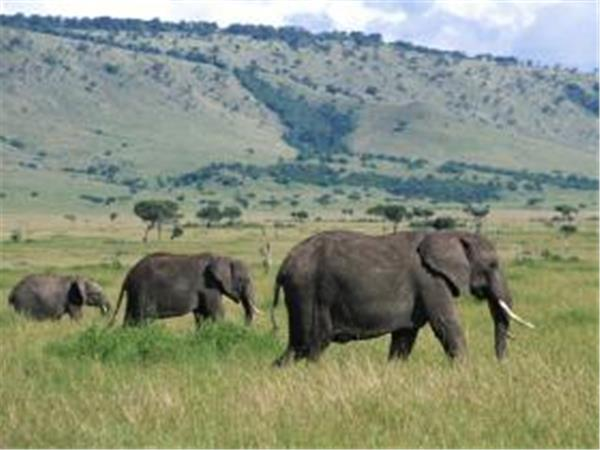 Kenya to Harare overland tour
