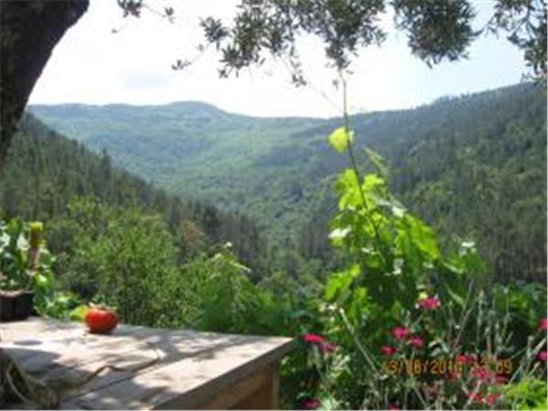 Central Portugal self catering mountain retreat